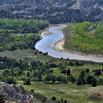 Little Missouri River and a Forest of Trees at River Bend Overlook in Spring (Theodore Roosevelt National Park) thumbnail