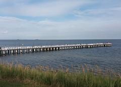 look at the pier in Gdynia Orłowo (~J♡onbicykle ☞) Tags: poland polska gdyniaorłowo pier molo