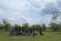IMG_6201 (mohandep) Tags: hessarghatta lakes karnataka butterflies birding nature wildlife insects signs food