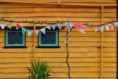 Yellow (holly hop) Tags: station wall bealiba heritage yellow window flags