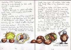 Conkers (Hornbeam Arts) Tags: chestnut conker tree aesculushippocastanum