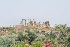 2018/07/09 12h10 ruines de Volubilis (Valéry Hugotte) Tags: 24105 antiquitã© maroc volubilis canon canon5d canon5dmarkiv romain ruines vuedensemble