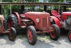 David Brown 30 D (samestorici) Tags: trattoredepoca oldtimertraktor tractorfarmvintage tracteurantique trattoristorici oldtractor veicolostorico 25 30d cropmaster