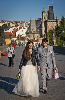 Nuvis errants / Migrating newlyweds