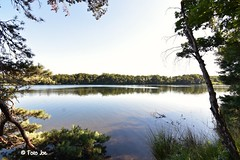 Beautiful lake (Foto . Joe) Tags: vught nederland tokina1116mm nikon lake nature trees water wandeling walking