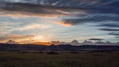 late afternoon light over the plains (odileva) Tags: sunset paysage june kenia masaimaranp nature transmara riftvalleyprovince kenya ke coth5
