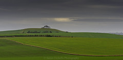 Contrast (James Etchells) Tags: marlborough downs wiltshire sony a700 landscape landscapes sky clouds reedit nature natural world fields tree trees photography colour color past memories dramatic outdoor outdoors south west england uk britain lines leading
