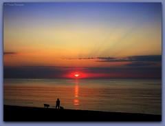 Spectateurs d'un nouveau jour (bleumarie) Tags: été été2018 littoralméditerranéen mariebousquet mididelafrance suddelafrance vacancesàlamer vacancesdété bleumarie côte catalogne france littoral méditerranée méridional mer midi plage pyrénéesorientales roussillon saintemarie saintemarielamer sud vacances fabuleuse
