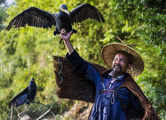 Blackbeard the Fisherman (Dan_Fr) Tags: portrait fisherman man cormorant birds china guangxi guilin yangshuo xingping trees travel culture cultural tradition traditional outdoor person people primelens sony a7r