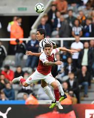 Newcastle United v Arsenal FC - Premier League (Stuart MacFarlane) Tags: sport soccer clubsoccer newcastleupontyne england unitedkingdom gbr