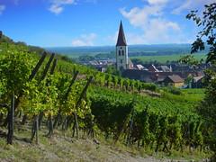 Ammerschwihr (Alsace, F) (pietro68bleu) Tags: église vignoble alsace