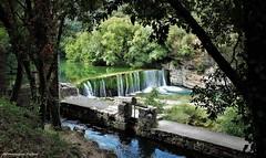 la Vis (Dominique Dufour) Tags: vis rivière fleuve affluent chute chutedelavis occitanie paysage nature bief fuji fujis5pro dominiquedufourphoto dominiquedufourflickr domdufour