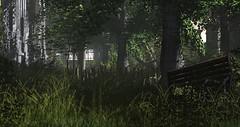 Overgrown 10 (Neaira Aszkenaze) Tags: neascape neascapes landscaping garden overgrown forest neglected studio skye ruin statue sunset shadows wl customwork custom work rundown run down secondlife second life secondlifelandscaping lanscapinginsecondlife sl serene meditation sanctuary dreamy calm