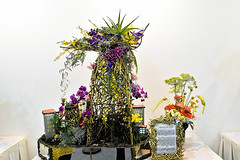 Floral Designing Competition (chooyutshing) Tags: 11thinternationalfdsscup floraldesigningcompetition singaporegardenfestival2018 meadow gardensbythebay baysouth marinabay singapore