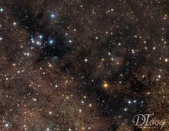 The Black Cosmic River (Delberson Tiago) Tags: astrophotography astronomy astrofoto astrofotografia astronomia astrophoto amateur cosmos universe universo milkyway stars starfield starcluster star dso qhy optolong vialactea astrometrydotnet:id=nova2754402 astrometrydotnet:status=solved