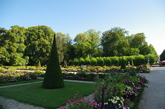 JLF19845 (jlfaurie) Tags: jardin hôteldeville evéché bourges jlfr mechas mpmdf lucila 21082018 flores garden flowers
