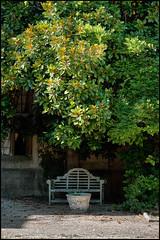 Thornbury Castle (Mark Greening) Tags: garden castle thornburycastle seat plant thornbury