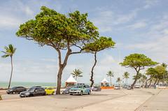 Parque dona lindu (eduardorodrigues10) Tags: parque dona lindu praia de boa viajem