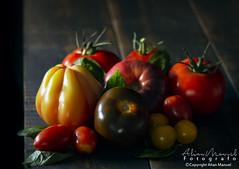 _DSC5982 (alianmanuel fotografia) Tags: tomate ensaladas vida sana stilllife bodegon fotografiaculinaria foodphotography photofood foddphoto foodphotograph bodegones