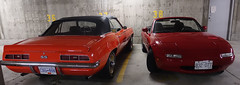 1979 Chevrolet Camaro SS 350 & 1990 Mazda Miata (D70) Tags: 1979 chevrolet camaro ss 350 1990 mazda miata 1979chevroletcamaross350 1990mazdamiata convertible collector classic red sportscar roadster parking stalls 37 38
