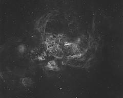 NGC6357 Ha Version (Haim Huli) Tags: lobster nebula lobsternebula star stars space astronomy astrophotographer astrophoto apod