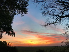 Sunset Through The Trees (Marc Sayce) Tags: red orange sky clouds sundown sunset countryside fields ropley soke four marks hampshire summer autumn september 2018