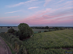 The Old Barn Withybrook 12th September 2018 (boddle (Steve Hart)) Tags: coventry england unitedkingdom gb the old barn withybrook 12th september 2018 steve hart boddle steven bruce wyke road wyken united kingdon great britain dji fc2103 mavic air wild wilds wildlife life nature natural bird birds flowers flower fungii fungus insect insects spiders butterfly moth butterflies moths creepy crawley winter spring summer autumn seasons sunset weather sun sky cloud clouds panoramic landscape 360 arial