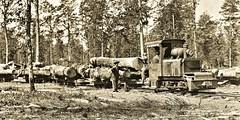 Baldwin gas engine hauling logs to Army saw mill, near Eclaron France July 8, 1918 NARA111-SC-17010-ac (SSAVE over 12 MILLION views THX) Tags: baldwinlocomotiveworks worldwari ww1 1918 narrowgauge lightrailway france aef