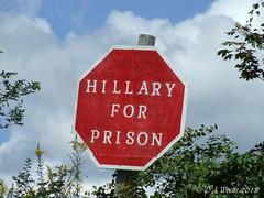Political Sign (Picsnapper1212) Tags: political sign politics sentiment 2016 election clintoncounty ohio