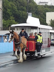 Douglas Bay Horse Tramway: Bobby and Car 45, Empress Drive (28/07/2018) (David Hennessey) Tags: douglas bay horse tramway bobby car 45 empress drive