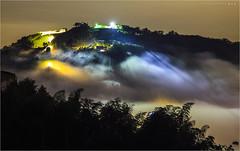 世外桃源 (蕭世榮) Tags: 南投縣 大崙山 茶園 銀杏森林 雲海 霧 夜景 fog landscape night