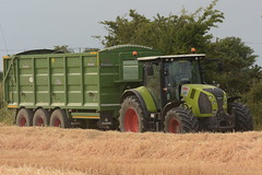 Claas Arion 650 Tractor with a Broughan Engineering Mega HiSpeed Grain Trailer (Shane Casey CK25) Tags: claas arion 650 tractor broughan engineering mega hispeed grain trailer green leamlara traktor tracteur traktori trekker trator ciągnik harvest grain2018 grain18 harvest2018 harvest18 corn2018 corn crop tillage crops cereal cereals golden straw dust chaff county cork ireland irish farm farmer farming agri agriculture contractor field ground soil earth work working horse power horsepower hp pull pulling cut cutting knife blade blades machine machinery collect collecting nikon d7200