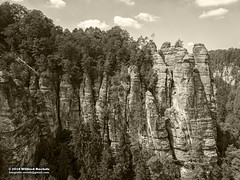 Bastei summer 2018 (Roelofs fotografie) Tags: wilfred roelofs fotgrafie nikon d5600 2018 germany schweiz sächsische nature nationaal park picture sepia panorama plant tree woods landscape foto forest kuuroord rathen sky skyline mountain mountainside air clouds cloud stone rock monument outdoor heritage summer walk adobe