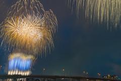 酒匂川花火大会 (Propangas) Tags: japan fireworks 小田原市 神奈川県 日本 jp night festival travel