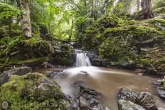 Cascades de Chiloza [FR] (ta92310) Tags: travel europe france 63 puydedome besse sancy auvergne cascade waterfalls waterfall chiloza longexposure auvergnerhônealpes landscape paysage nature