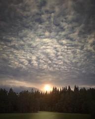 ~ crazy clouds ~ Riddarhyttan Sweden (Tankartartid) Tags: oväder weather väder badweather molnigt cloudy redigerad edited picsart landskap landsbygd landscape skog woods forest sun sol moln himmel clouds sky nature västmanland riddarhyttan norden nordic europe sverige sweden