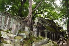 Angkor: Ta Prohm (Яeиée) Tags: angkorvat angkorthom sanctuaire cambodge asie temples preahkhan taprohm siemreap baphuon bayon angkor khmer architecture patrimoines angkorlamerveilleuse banteaysrei bouddhisme hindouisme fromager takeo phimeanakas banian