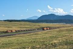 RR-20180731-JointLine-228-e (skyviewtim) Tags: bnsf9217 bnsf9616 coalempty coalload coloradorailroads coloradotrains meet spruce colorado unitedstates us