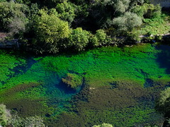 Green river (cosbrandt) Tags: gfx50s gf110mm provence vaucluse green river colors