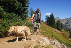 Hikers with dog on the Maple Pass Loop (riversandcreeks) Tags: maplepassloop inventoriedroadlessarea roadlessarea roadless hiking northcascades northcascadesscenichighwaycorridor