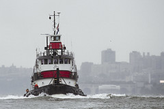 r_180909242_beat0075_a (Mitch Waxman) Tags: 2018greatnorthrivertugboatrace hudsonriver manhattan tugboat workingharborcommittee newyork