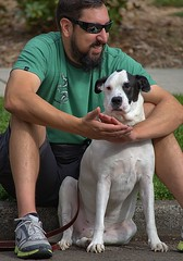 Buddies (Scott 97006) Tags: guy man dog canine animal shades seated watching curb street