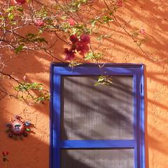 sunny portal II (msdonnalee) Tags: door doorway entry portal ceramicsun bouganvillia shadow ombra ombre sombra sombre schatten morningsunlight mexico sanmigueldeallende