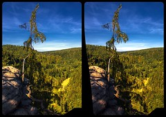 Outlook Hockstein 3-D / CrossView / Stereoscopy / HDRaw (Stereotron) Tags: saxony sachsen saxonswitzerland sandstone mountains nationalpark sächsischeschweiz dresden elbflorenz cross eye view xview crosseye pair free sidebyside sbs kreuzblick bildpaar 3d photo image stereo spatial stereophoto stereophotography stereoscopic stereoscopy stereotron threedimensional stereoview stereophotomaker photography picture raumbild twin canon eos 550d remote control synchron kitlens 1855mm 100v10f tonemapping hdr hdri raw