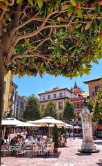Outdoor cafe in Ovieto, Spain (Randy Durrum) Tags: asturias ovieto spain outdoor cafe fountain umbrella summer noon durrum samsung s9 shade tree camino primitivo