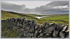 Sur la route d'Ulapool ( On the road to Ulapool) (pileath) Tags: nuage ciel ecosse muret cloud sky scotland stone wall landscape paysage champ green vert