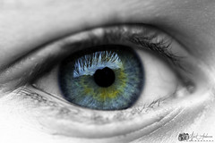 Eyes as blue as the ocean (neilanderson1982) Tags: eye ocean blackandwhite colourful coloursplash sigma105mm nikond5300 nikon iris pupil sight blue yellow flickr
