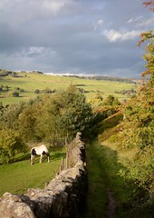 After The Rain (vesna1962) Tags: scenery landscape countryside path downhill drystonewall horse grazing sky view valley fields sunlight autumn trees haworth brontëcountry westyorkshire england nature lateafternoon