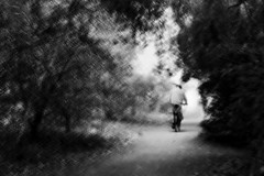 The cyclist (Zara.B) Tags: icm intentionalcameramovement riverside cyclist slow shutter impression abstract monochrome black white blackandwhite bw painterly