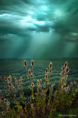 The Storm Before The Calm (Phil~Koch) Tags: life mood emotions country outdoors colors living heaven weather horizons lines landscape field art meadow sky horizon sunset clouds scenic vertical photography office portrait serene morning dawn nature natural earth environment inspired inspirational season beautiful hope love joy dramatic unity trending popular canon rural fineart arts shadow sun sunrise light peace wisconsin shadows endless pastel sunlight green blue summer travel journey storm rain farming